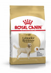 ADULT LABRADOR RETRIEVER ROYAL CANIN