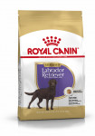 LABRADOR RETRIEVER STERILISED ROYAL CANIN